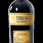 gattinara-2009